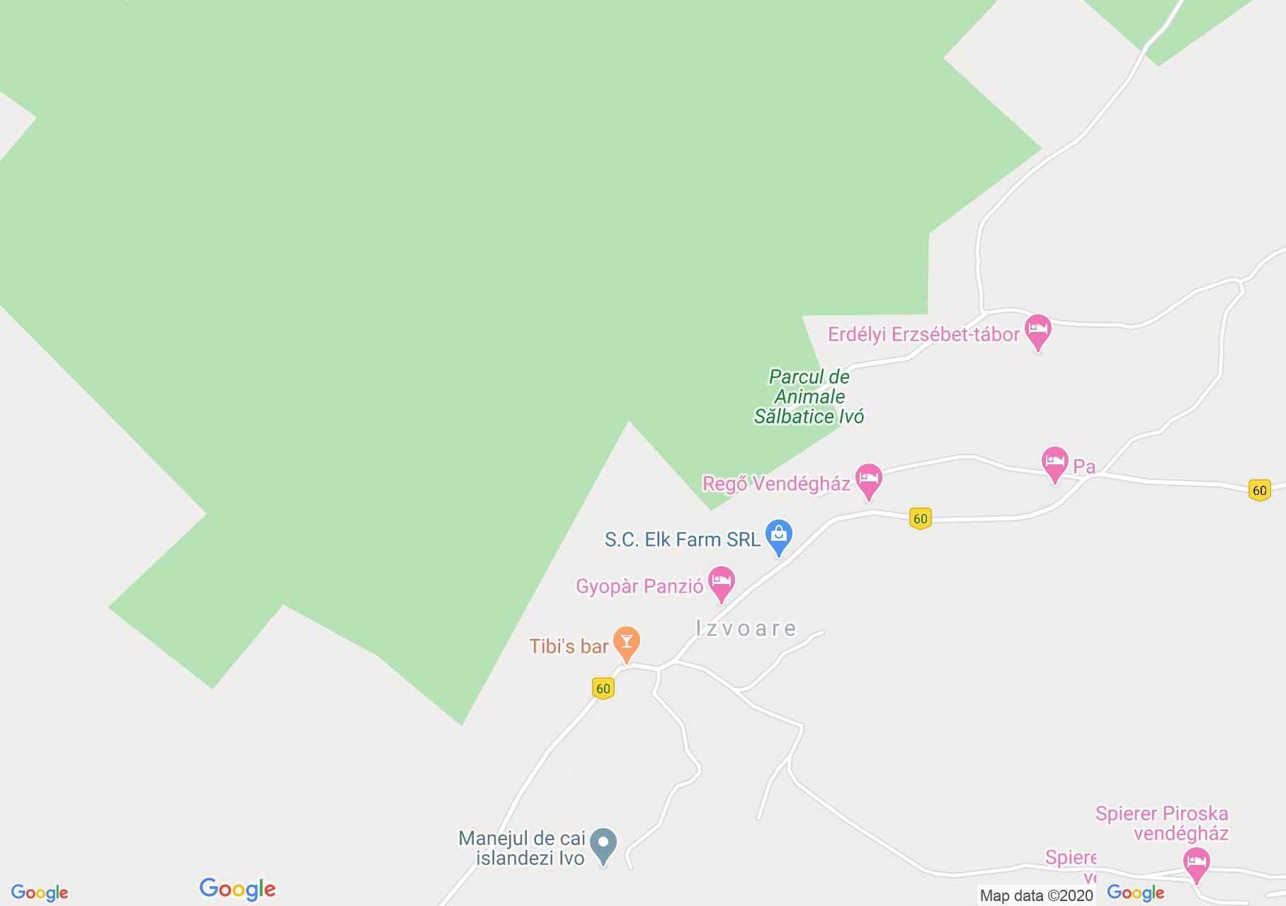 Map of Izvoare: Saw mill