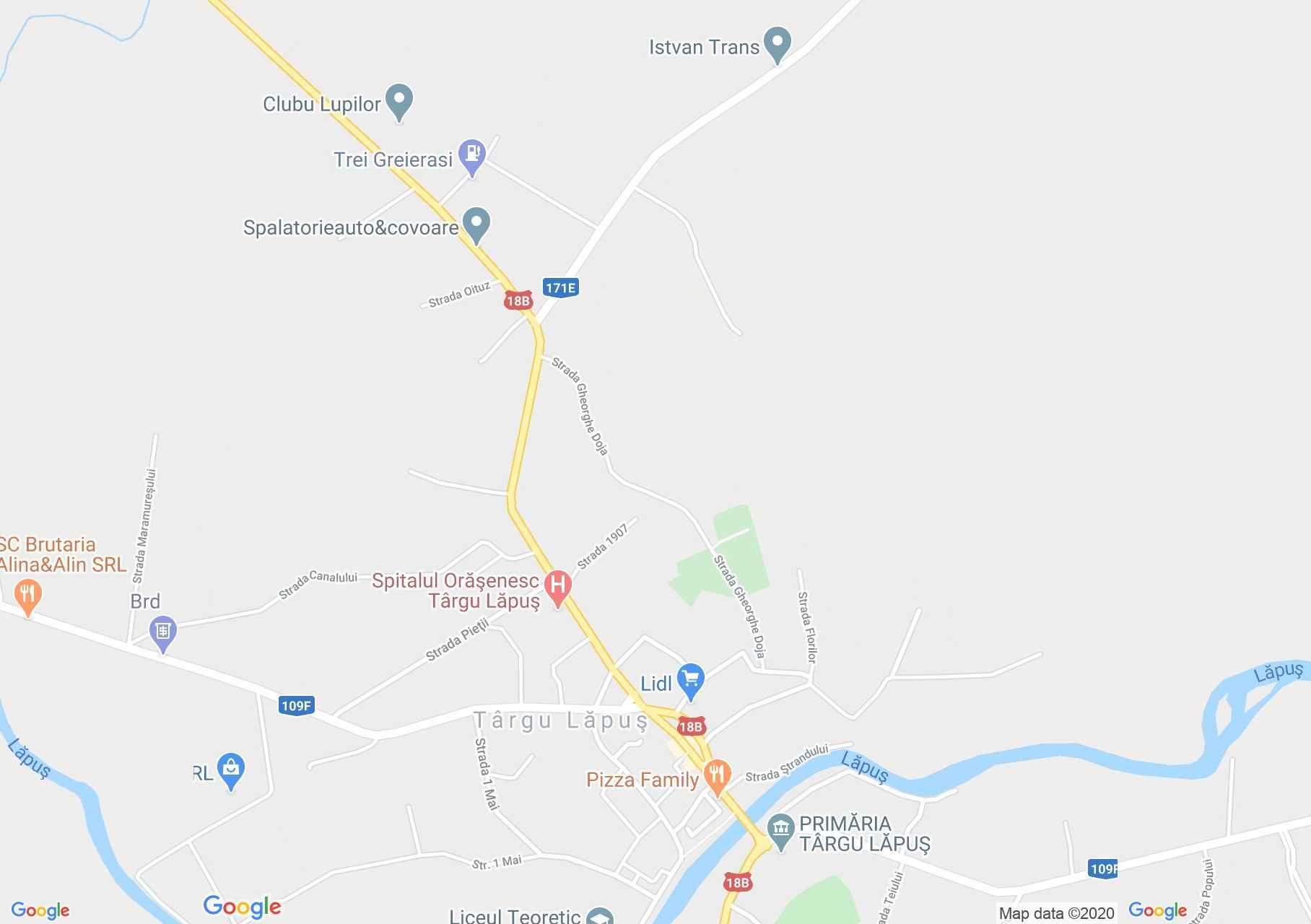 Hartă Târgu Lăpuş: Biserica ortodoxă