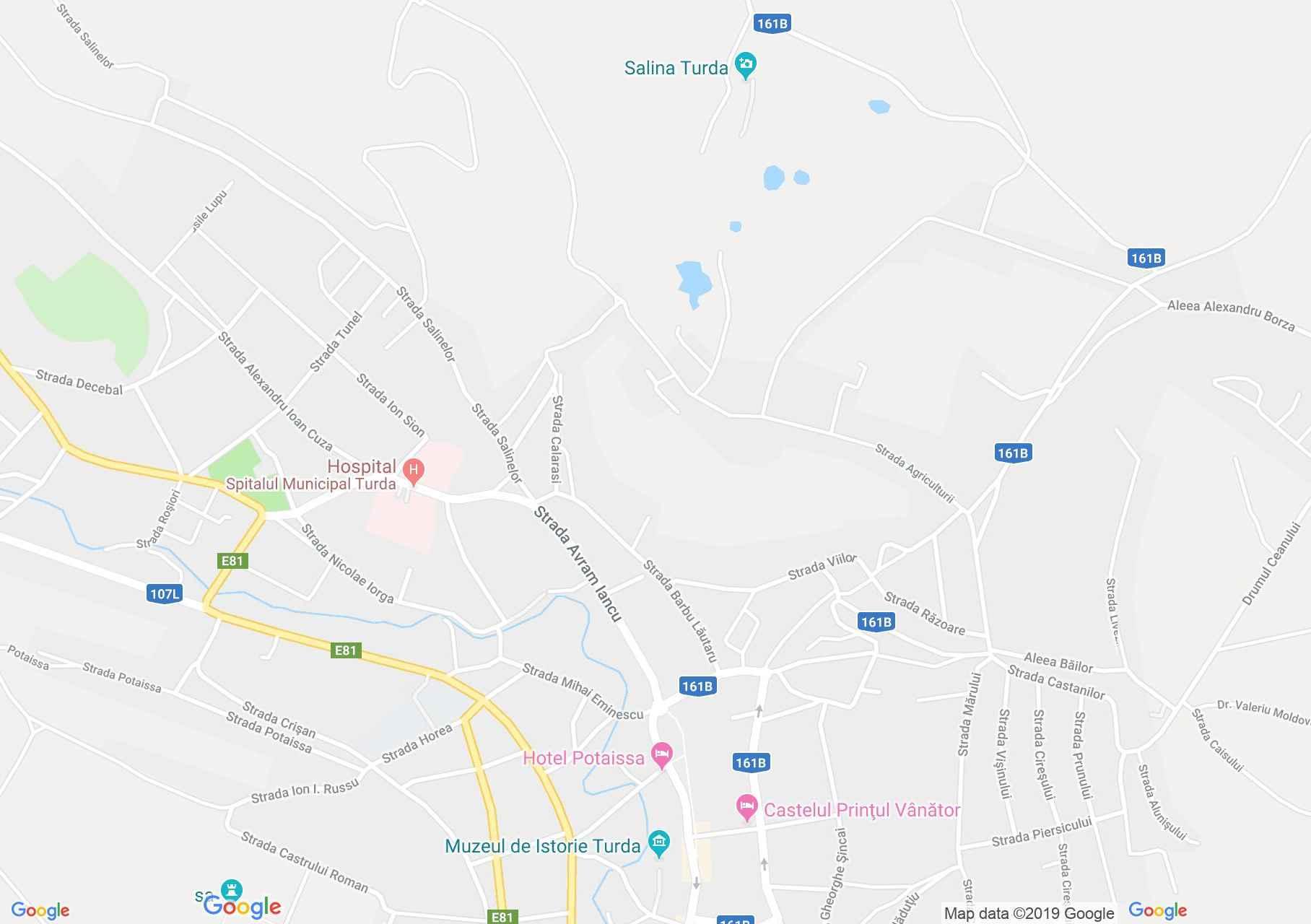 Hartă Turda: Lespedea de pe str. Avram Iancu